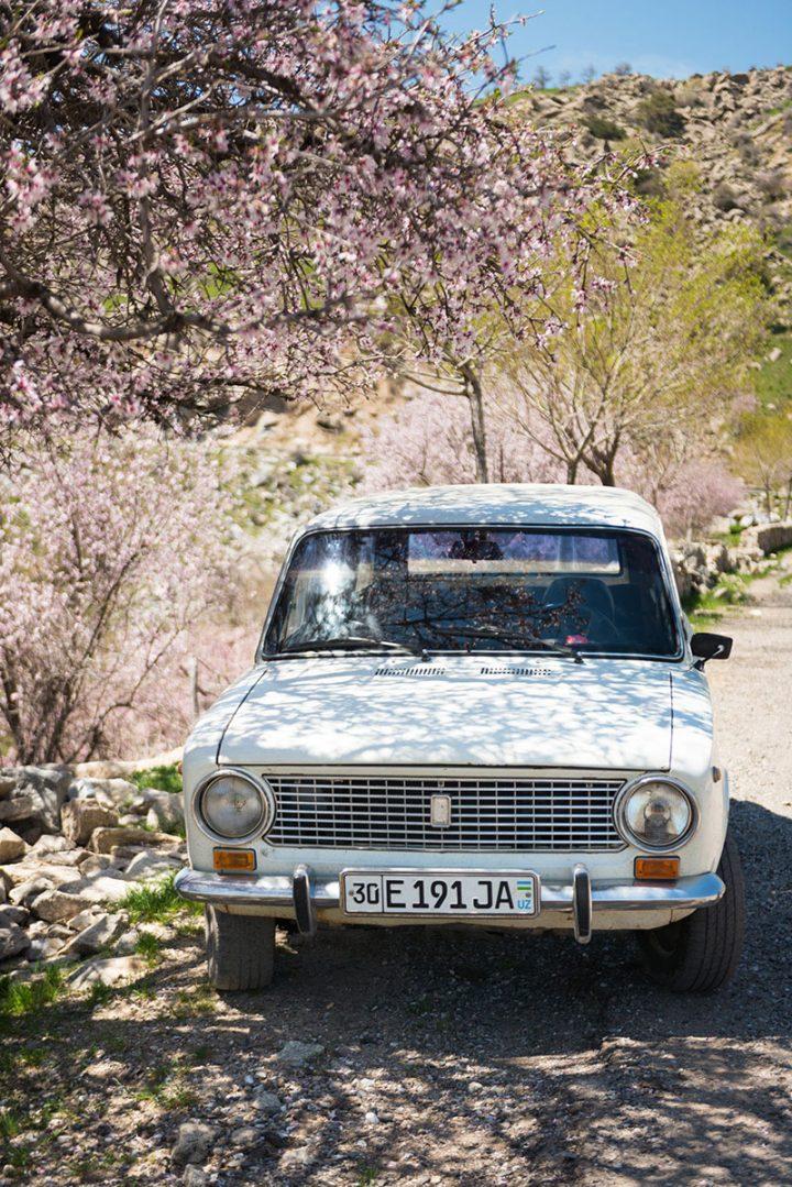 wewantadventure-uzbekistan-12